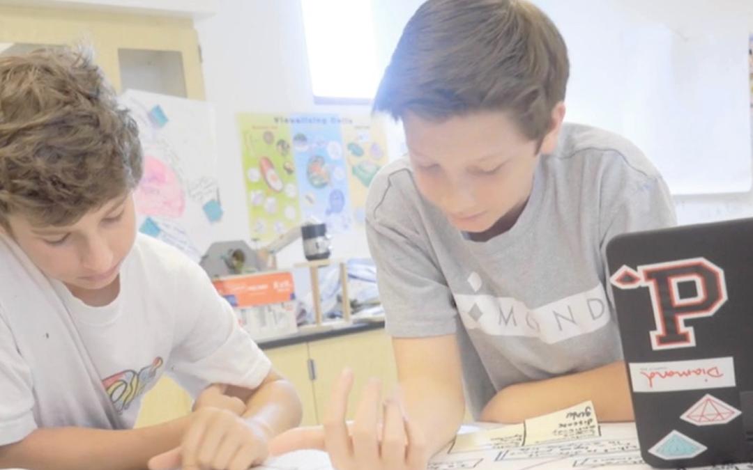 Windward School: The Lupus Project